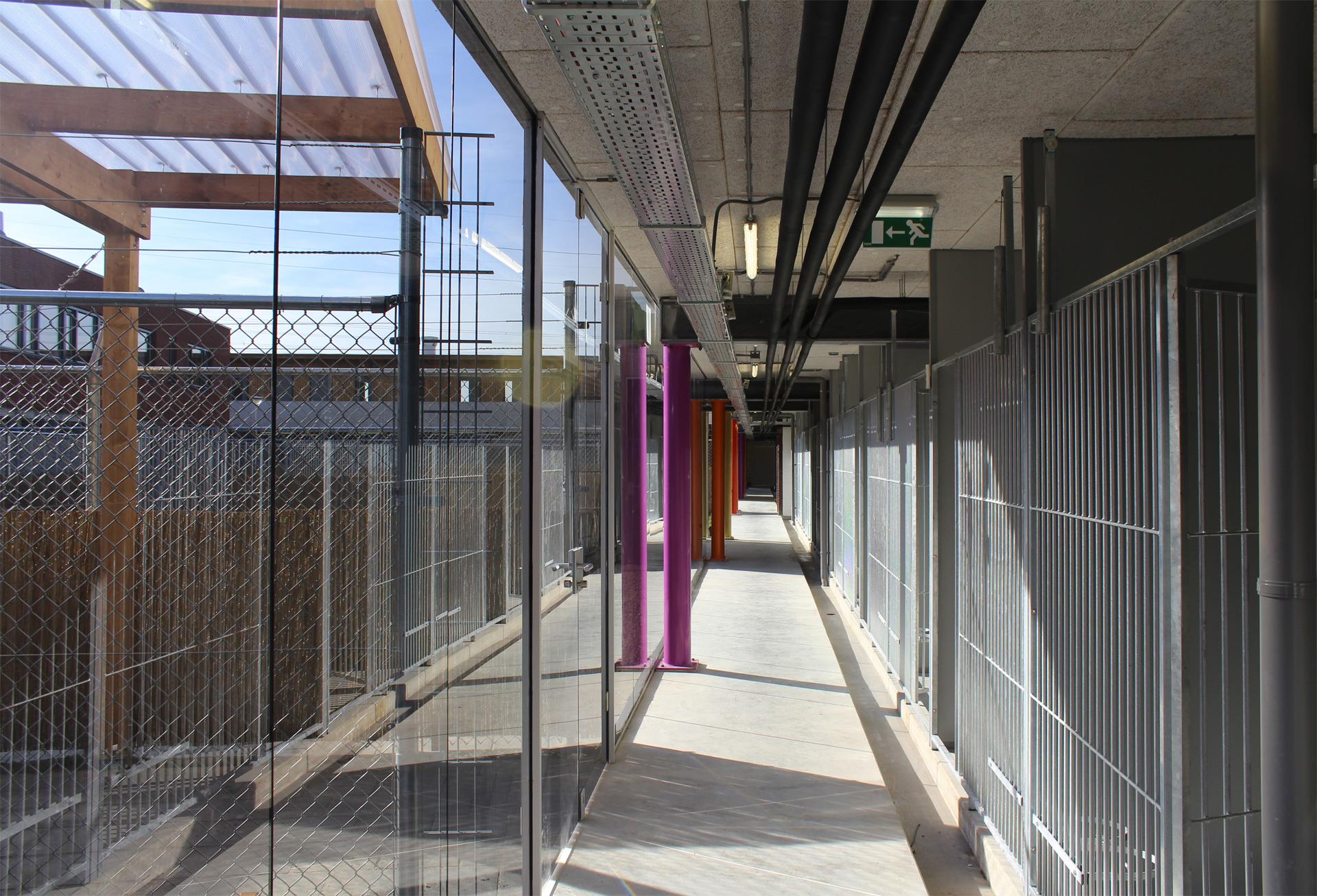 nieuwbouw-dierenasiel-gekleurde-kolommen-7