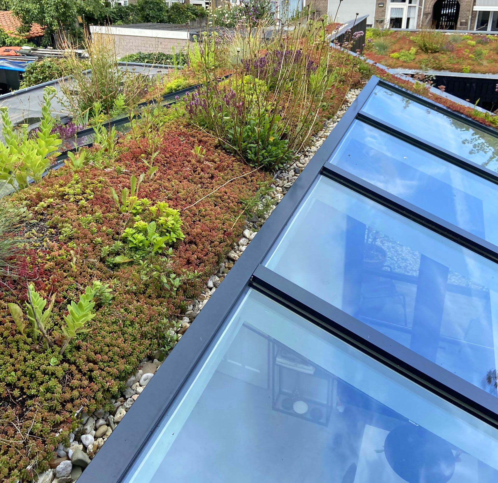 Aanbouw-groen-dak-architect-Breda-16